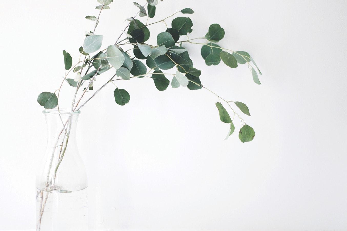 Nouvel Haze & Loire Russet Oak